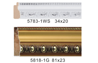 5783-1WS