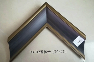CS137香槟金(70×47)